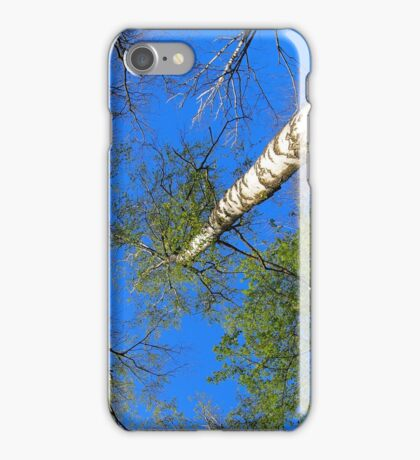 Three birch trees on the background of the sky iPhone Case/Skin