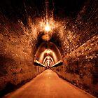 Fernleigh Track by Matthew Jones