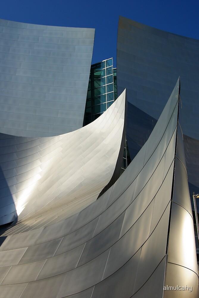 Walt Disney Concert Hall by almulcahy
