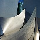Walt Disney Concert Hall by almulcahy