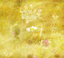 Sweet memories of summer by vigor