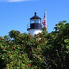 Pemaquid Lighthouse from the Land Side by MaryinMaine