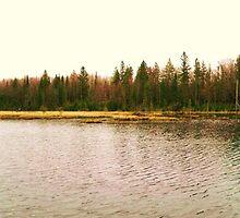 Gadwall Lake by Seth LaGrange