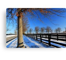 Winter in Central Kentucky Canvas Print