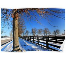 Winter in Central Kentucky Poster