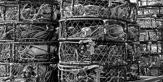 Crab Pots, Half Moon Bay, California by Scott Johnson