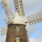 Callington Mill by Elisabeth  Cannell