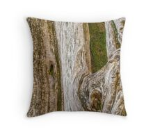 The bark of old trees Throw Pillow