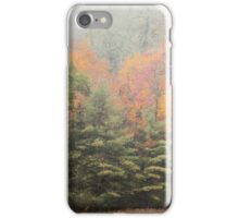 Cataloochee Valley Colors iPhone Case/Skin