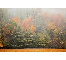 Cataloochee Valley Colors Photographic Print