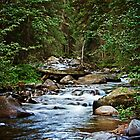 Mountain River by Lisa Holmgreen