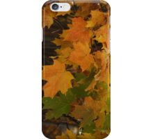 Fall Leaves iPhone case iPhone Case/Skin