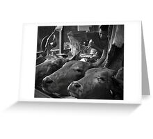 The real butcher Greeting Card