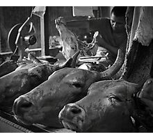 The real butcher Photographic Print