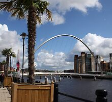 Palm Tree on the Tyne by Alison Ward