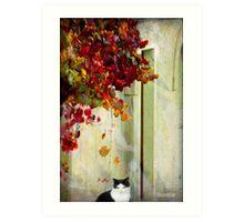 Autumn dreaming Art Print