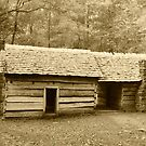 Dogtrot by Gary L   Suddath