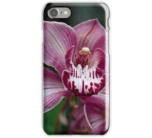 Orchid iPhone Case/Skin