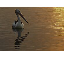 Sunglow Photographic Print