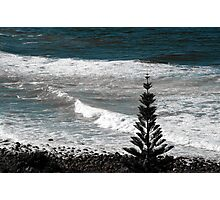 Lennox Head, Australia Photographic Print