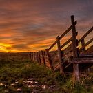 Cattle Ramp Sunset by Scott Sheehan