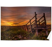 Cattle Ramp Sunset Poster