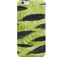 Impression Water Reed Minnows iPhone Case/Skin