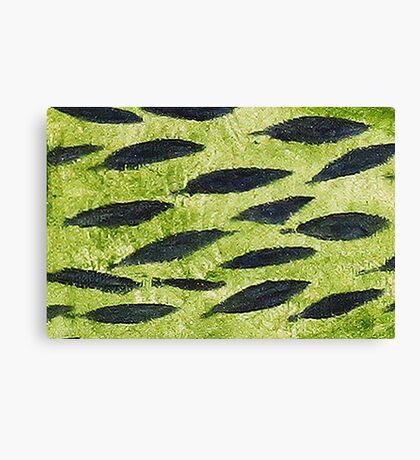 Impression Water Reed Minnows Canvas Print
