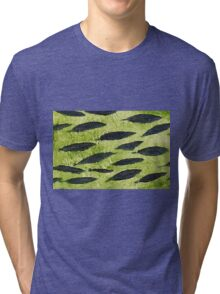 Impression Water Reed Minnows Tri-blend T-Shirt