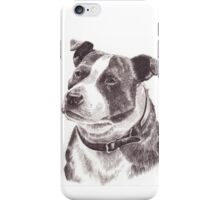 Staffordshire Bull Terrier in Pencil iPhone Case/Skin