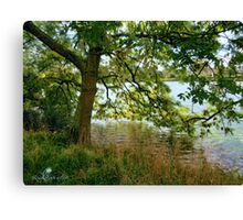 Narcissus Tree Canvas Print