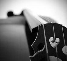 Beautiful Instrument by Steven Le Roux