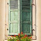 Beautiful Window 1 by Jacinthe Brault