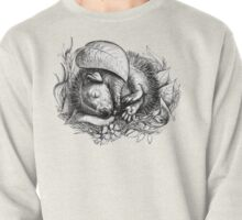 Baby hedgehog sleeping Pullover