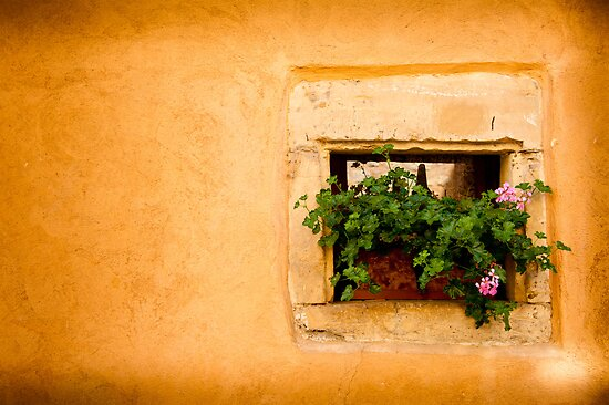 Beautiful Window 3 by Jacinthe Brault