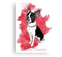 B is for Boston Terrier Canvas Print