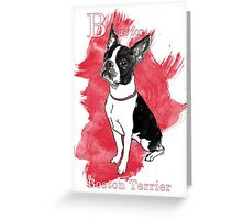 B is for Boston Terrier Greeting Card