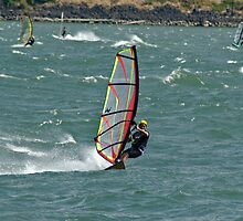 Windsurfer by Robert H Carney