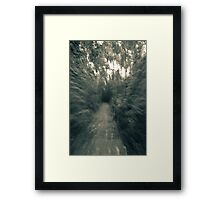 Down the path Irwin Prairie State Nature Preserve Framed Print