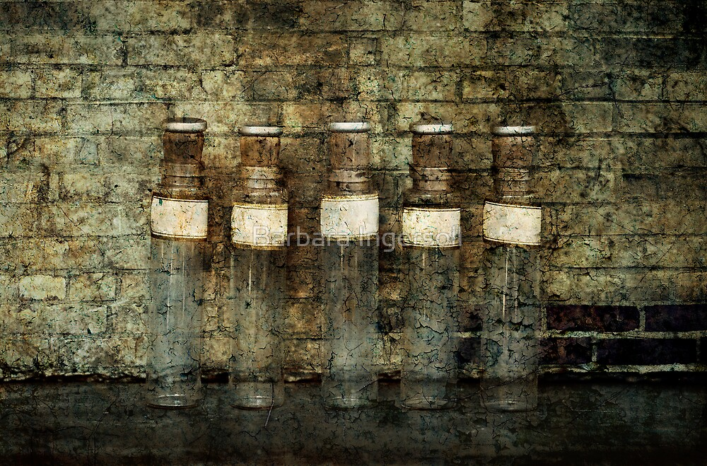 Apothecary by Barbara Ingersoll