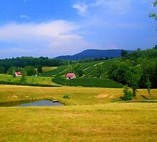 Breathtaking North Carolina Country by Mechelep