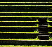 Steps ~ Part Three by artisandelimage