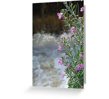 Foam And Flower Greeting Card