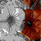 Metallic Petunia's by Mechelep