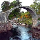 Carrbridge by Tom Gomez
