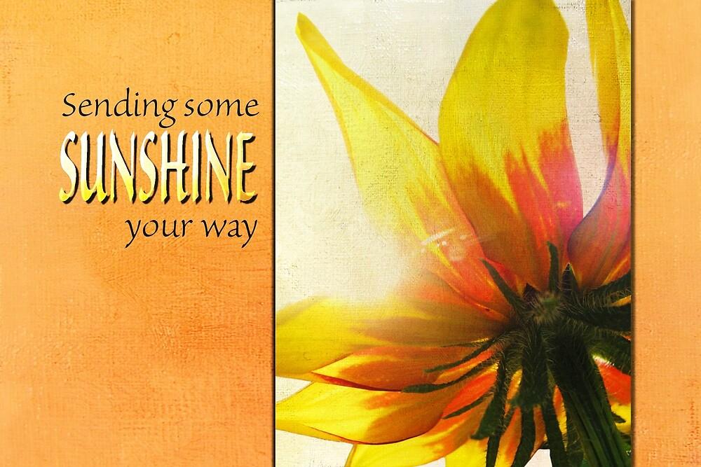 Sending Sunshine (Card) by Tracy Friesen