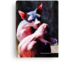 Hold Me, Thrill Me Canvas Print