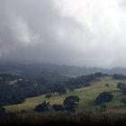 Buellton Hill by BalancedArt
