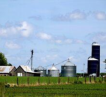 Iowa Farmlands by Marielle Valenzuela