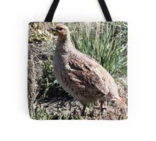 Sharp Tailed Grouse Tote Bag